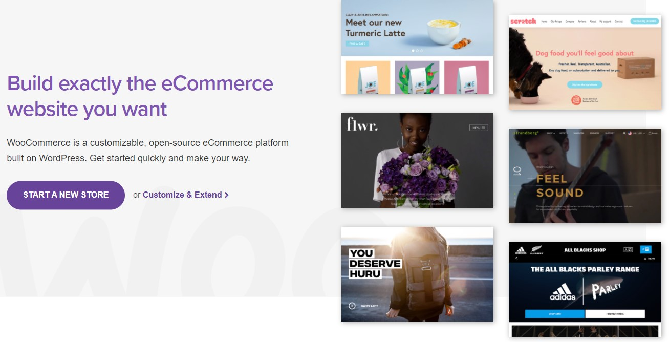 screenshot WooCommerce Homepage