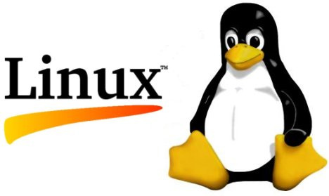 Linux Basics – head, tail, cat and more (or less)