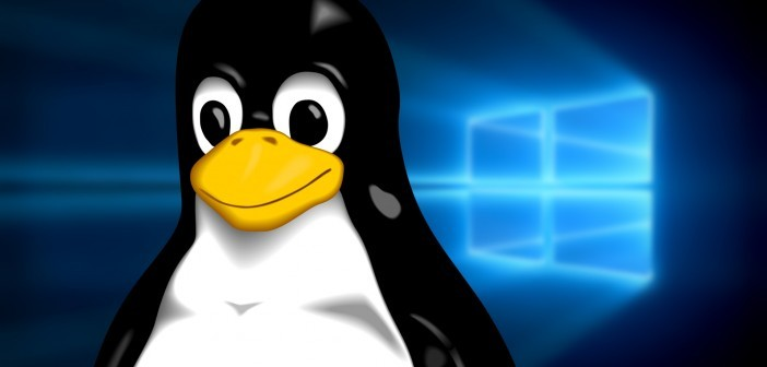 Difference between Windows and Linux cloud server